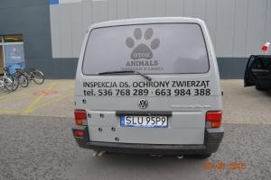 auto (4)